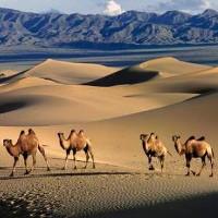 Hoang mạc và sa mạc khác nhau thế nào?