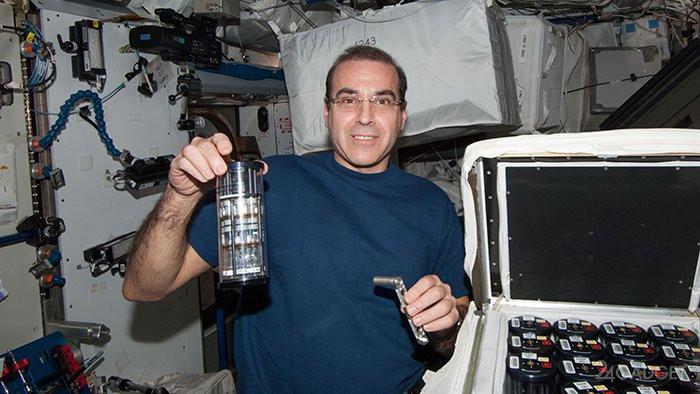 Rick Mastracchio, Phi hành gia của NASA, đang giám sát thí nghiệm trên ISS.