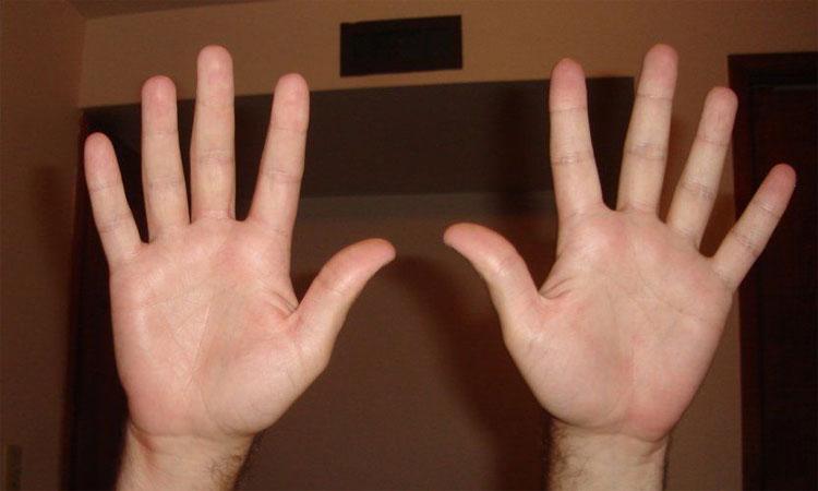 Con người có 10 ngón tay linh hoạt để cầm nắm các đồ vật.