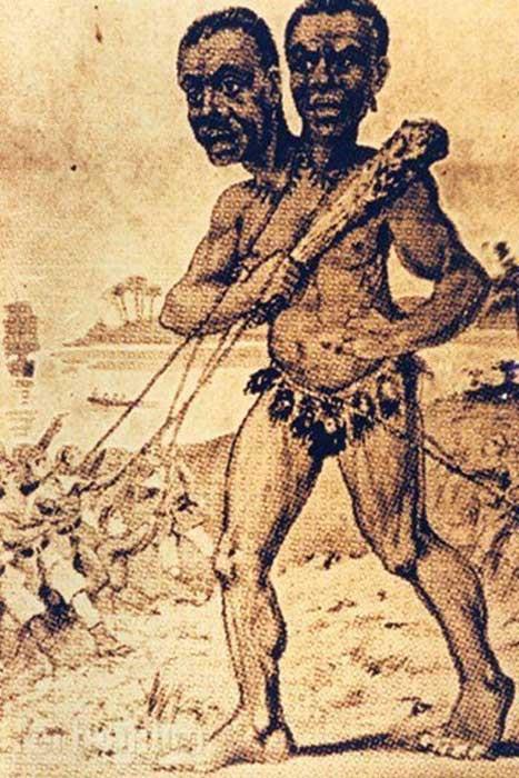 Ảnh minh họa người khổng lồ hai đầu do các thủy thủ ghi lại.