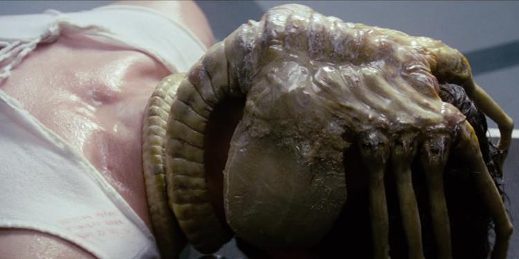 Sinh vật này sẽ bám vào mặt con người, đẻ trứng vào cơ thể họ qua đường... miệng.
