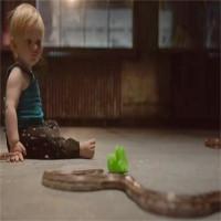 Em bé một mình chơi đùa với rắn và lời giải khoa học đằng sau đó