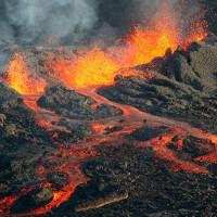 Đây là thảm họa gây tuyệt chủng hàng loạt khủng khiếp nhất Trái đất