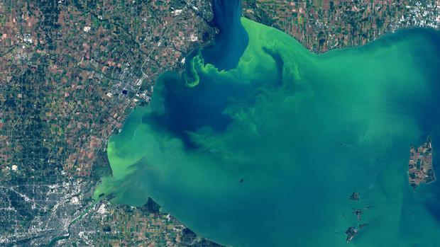 Nước hồ Erie bỗng chuyển thành màu xanh lá huyền ảo, tuyệt đẹp.