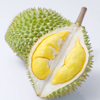 Nguồn gốc mùi hương độc đáo của quả sầu riêng từ đâu mà có?