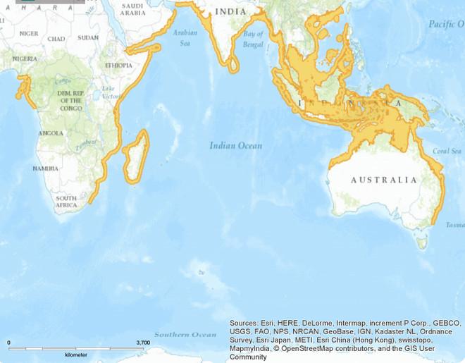 Phạm vi phân bố của loài Cá mập mắt lợn (màu vàng).