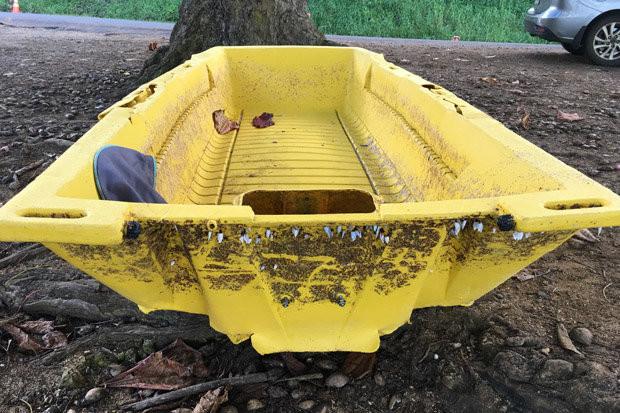 """Xác """"thuyền ma"""" dạt vào bờ biển Hawaii."""