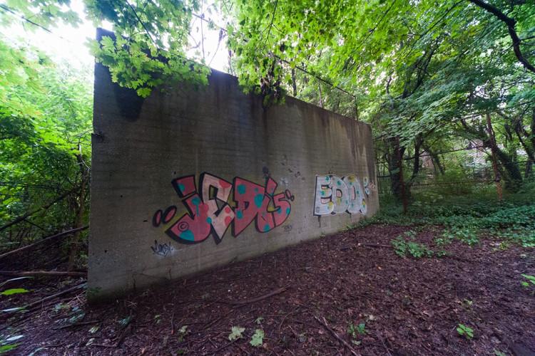 Dù có lệnh cấm, một số người vẫn lén lên đảo, bằng chứng là bức vẽ graffiti trên tường sân bóng này.