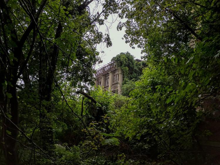 Vô vàn công trình nằm ẩn giữa cây cối, khiến du khách có cảm giác như đang ở trong một khu vực sau tận thế.