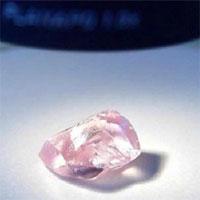 Viên kim cương hồng khổng lồ đắt nhất thế giới vừa được tìm thấy