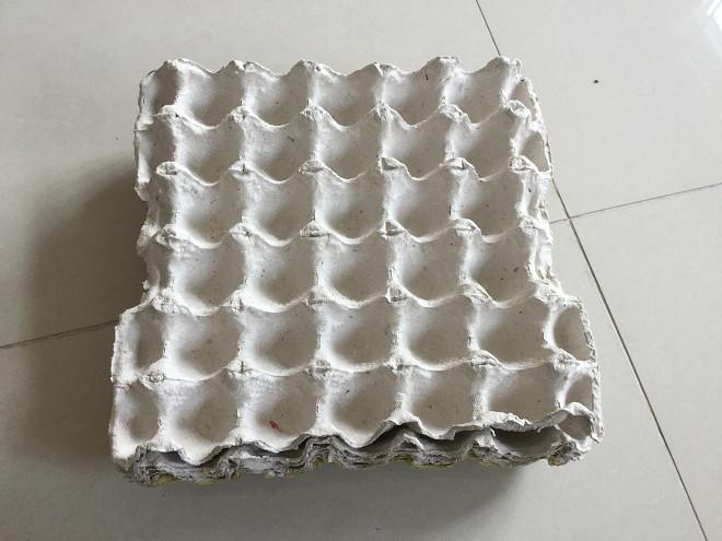 Khay giấy đựng trứng