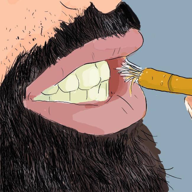 Người Ai Cập xưa đã dùng gỗ nhai như 1 cách để vệ sinh răng.