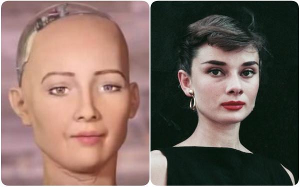 Sophia vốn được lấy theo ngoại hình của Audrey Hepburn.