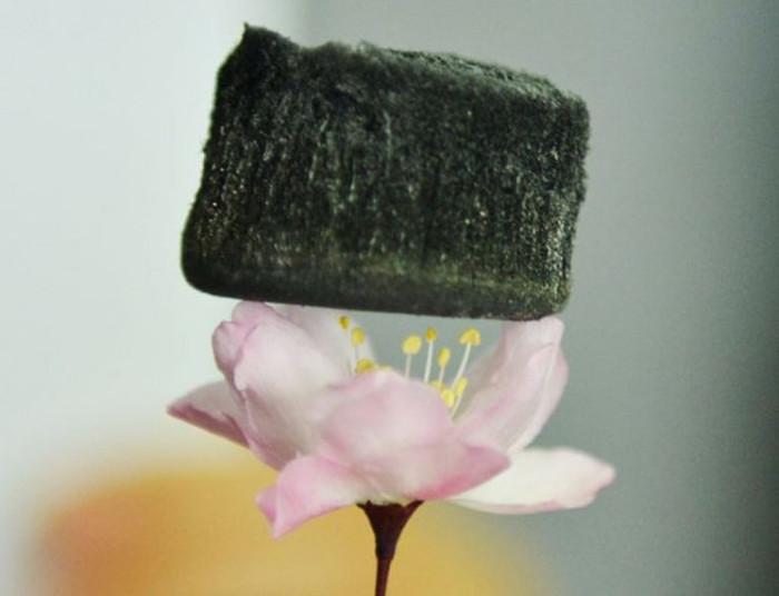 Aerogel nhẹ đến mức có thể đặt trên một bông hoa.