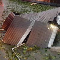 20 người chết, 17 người mất tích vì bão Damrey