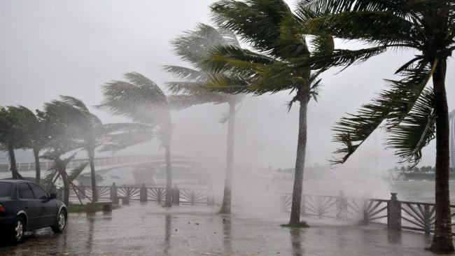 Mùa mưa bão thường kéo dài từ tháng 7 đến tháng 11, trung bình mỗi năm có 5 - 8 cơn bão.