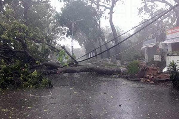 Cảnh đổ nát trên các tuyến đường ở trung tâm thành phố Nha Trang