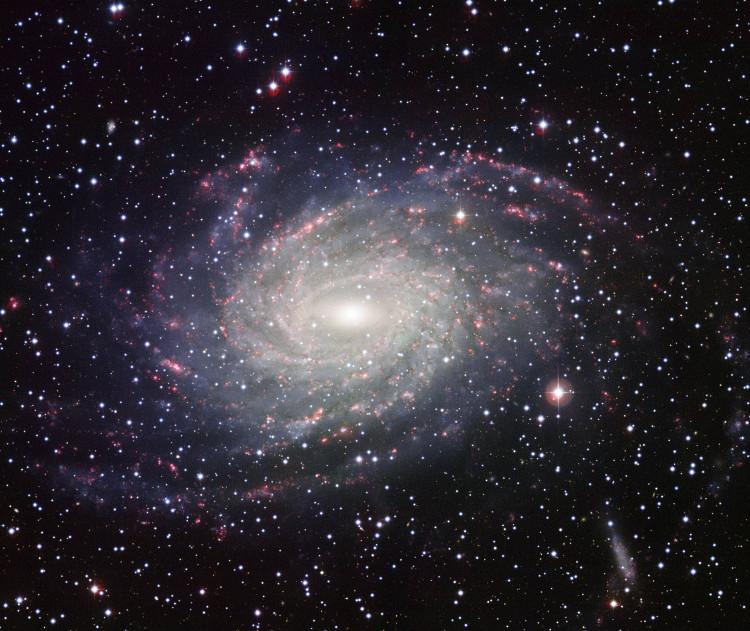 Hình ảnh toàn cảnh của thiên hà NGC 6744