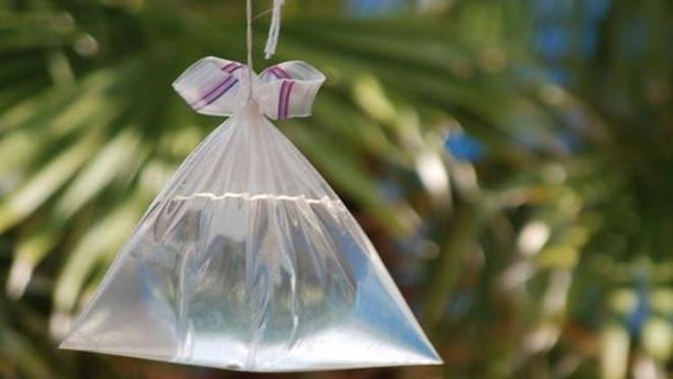 Túi bóng nước