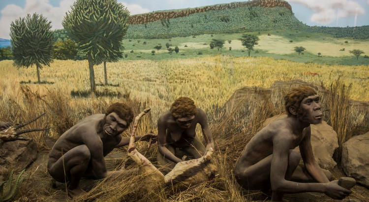 Ảnh phác họa về loài Homo sapiens.