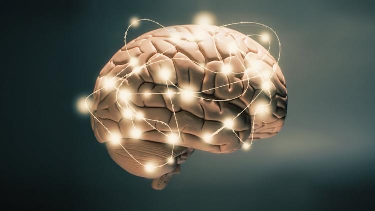 Sự tích tụ dopamine oxy hóa trong tế bào não khiến một số tiêu thể bị hỏng,