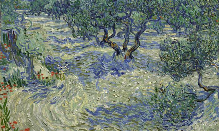 """Tác phẩm """"Những cây olive"""" của danh họa nổi tiếng Van Gogh."""