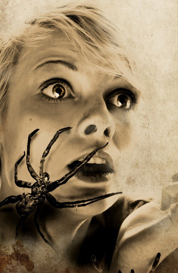 Sợ nhện