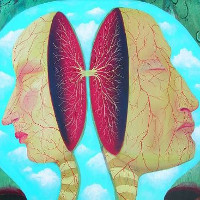 Người có não tách đôi, linh hồn họ có bị chia làm 2 nửa khác nhau không?