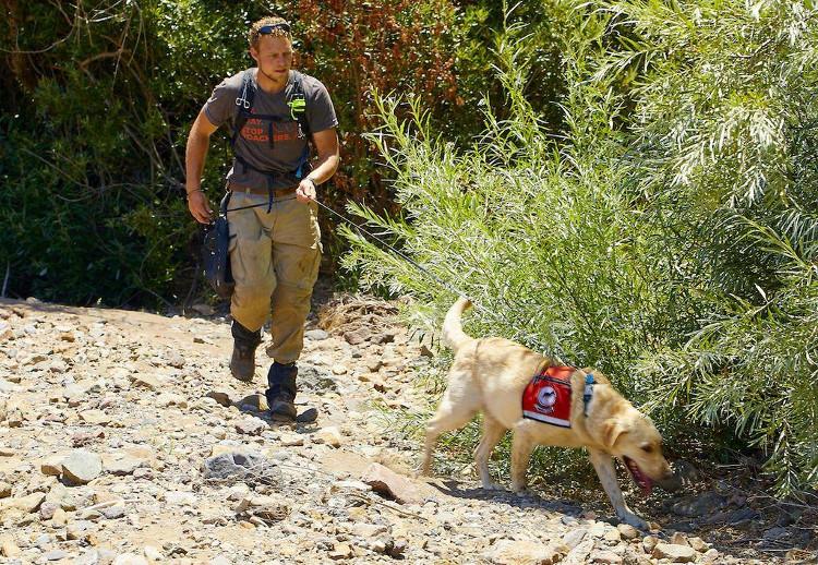 Kyren Zimmerman và Tobias đang tìm kiến tại đảo Santa Cruz, Mỹ