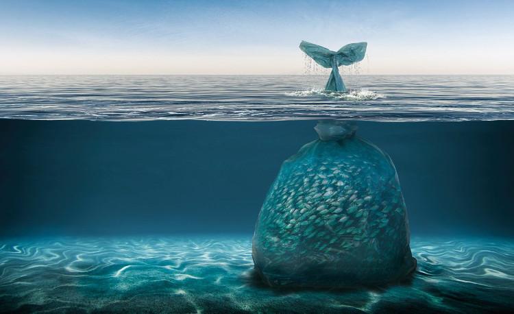 Các loại rác thải nhỏ mà con người thải ra ở đại dương sẽ bị sóng đánh ra xa rồi lâu ngày chìm xuống đáy biển.