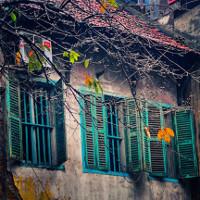 Nao lòng ngắm cảnh đẹp nên thơ của mùa đông Hà Nội
