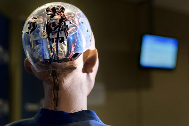 Bạn nghĩ sao về tương lai con người và robot?