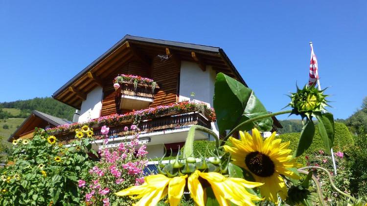 Ngôi làng đã đưa ra chính sách nhằm thu hút các gia đình và những người dưới 45 tuổi đến đây mua hoặc xây nhà.
