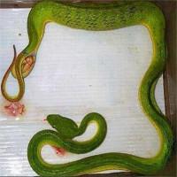 Video: Lý do một số loài rắn đẻ con thay vì đẻ trứng