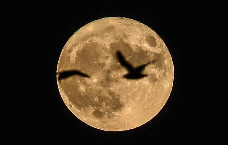 Một siêu trăng từng xuất hiện được chụp ở Cộng hòa Czech