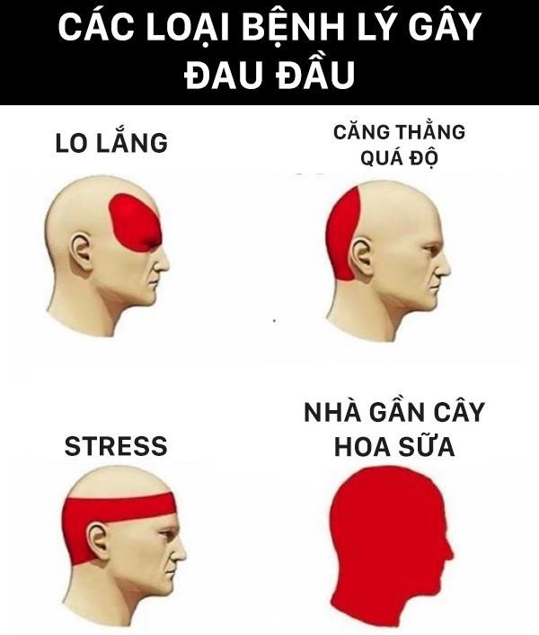 Bệnh lí gây đau đầu
