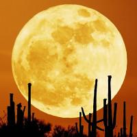 Siêu trăng là gì? Việt Nam sẽ đón Siêu trăng vào thời điểm nào?