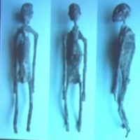 """""""Bộ xương người ngoài hành tinh"""" được tìm thấy ở Peru là thật?"""