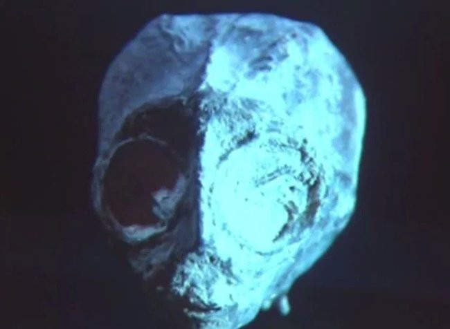 """Chiếc đầu với con mắt to của """"người ngoài hành tinh""""."""