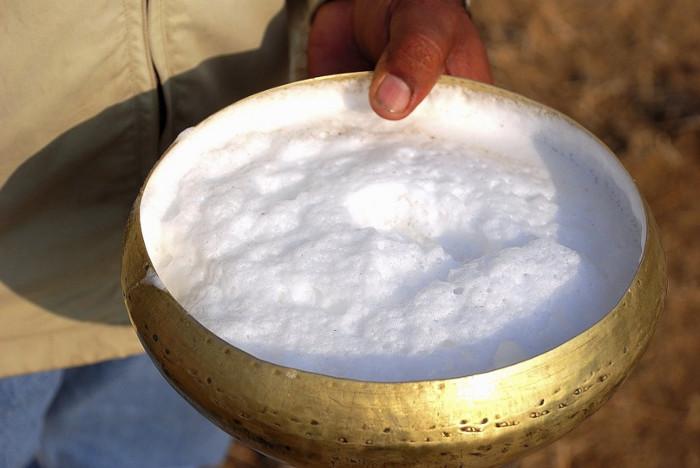 Sữa lạc đà có giá thành cao hơn nhiều so với các loại sữa thông thường.
