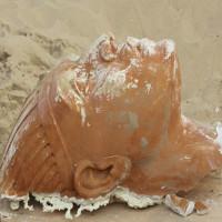 Bất ngờ tìm thấy đầu tượng nhân sư khổng lồ ở Mỹ