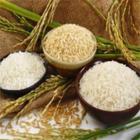 Vì sao nên ăn gạo còn cám thay vì gạo trắng?