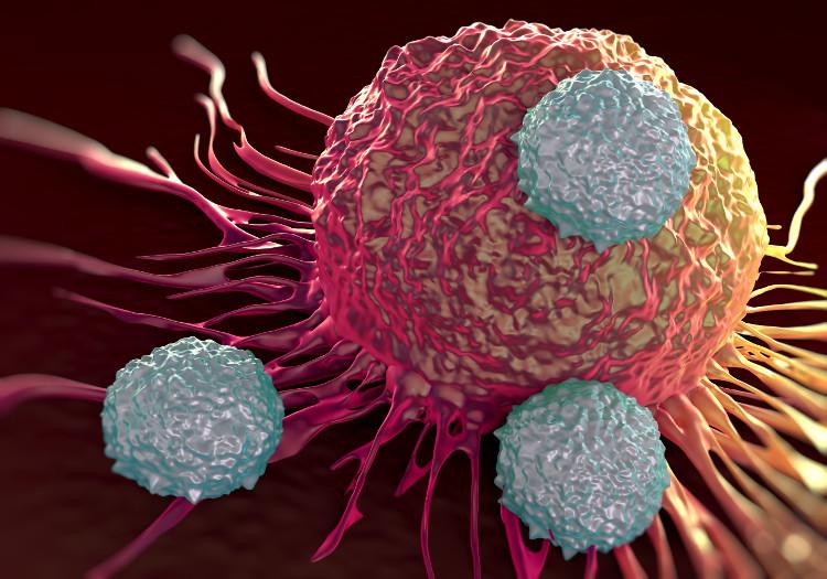 Liệu pháp miễn dịch tế bào T