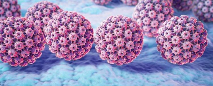 Hầu hết các trường hợp ung thư cổ tử cung là do virus HPV gây ra.