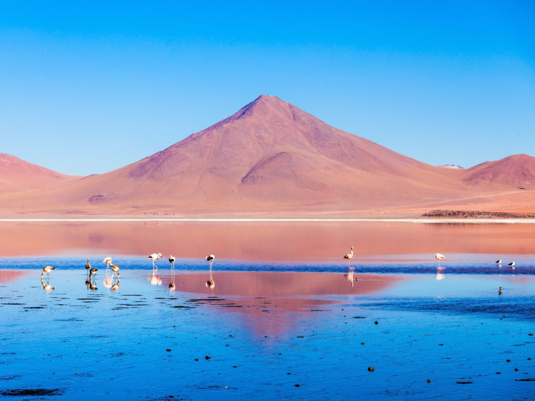 The Andes, Bolivian Altiplano
