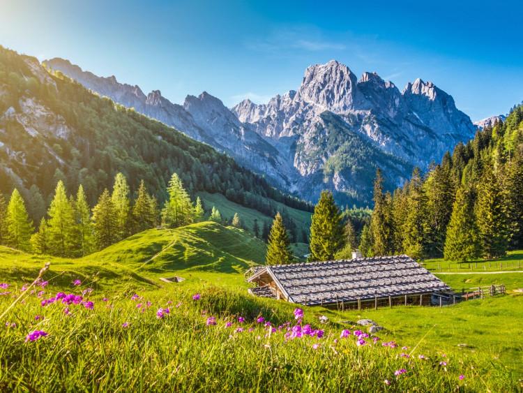 The Alps, châu Âu