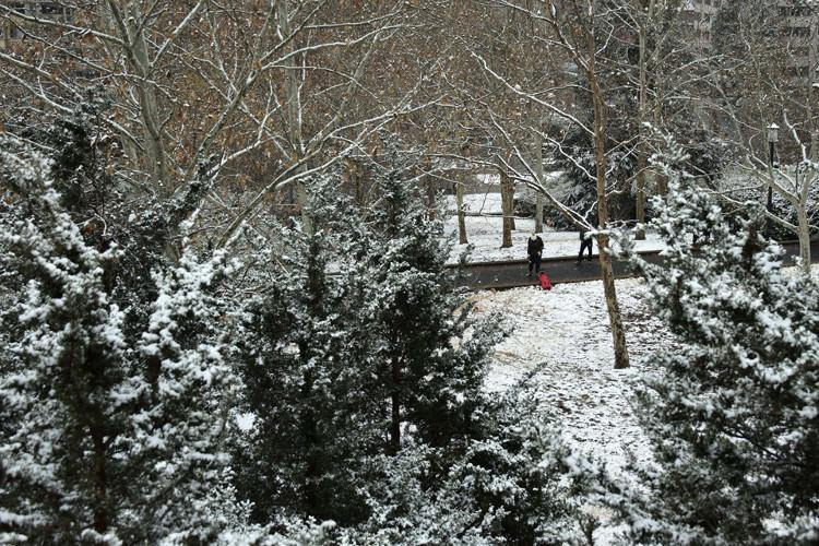 Trong ảnh, một phụ nữ đi dạo cùng chó cưng tại công viên Meridian Hill.