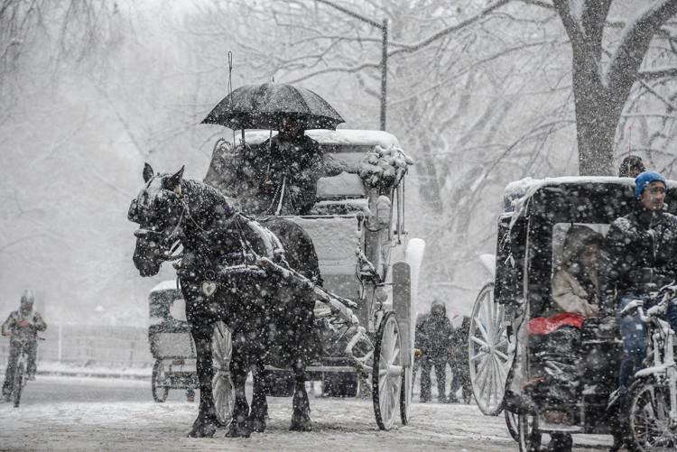 Người dân New York tại Công viên Trung tâm trong ngày đầu tiên của đợt tuyết rơi.