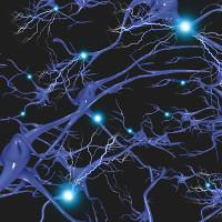 Đột phá y học mang lại hy vọng cho người bị thoái hóa não