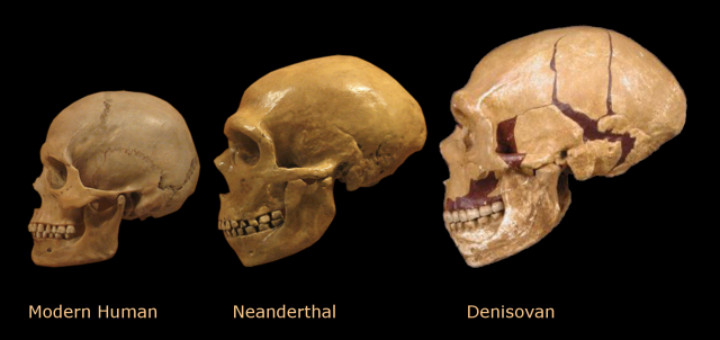 Tổ tiên chúng ta bắt đầu di cư có thể sớm hơn rất nhiều, cách đây khoảng 120 ngàn năm.